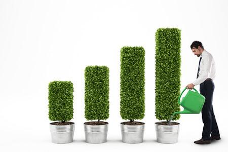 Nachhaltiger SEO-Erfolg für Ihr Unternehmen